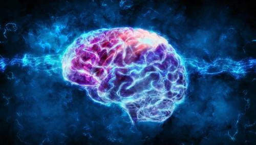 Trí tuệ nhân tạo giải mã sóng não người