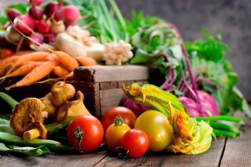 Hướng dẫn hoạt động chứng nhận nông nghiệp hữu cơ