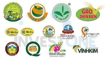 Tuân thủ quy định sở hữu trí tuệ khi thực thi EVFTA: Doanh nghiệp Việt Nam cần chuẩn bị những việc quan trọng nào?